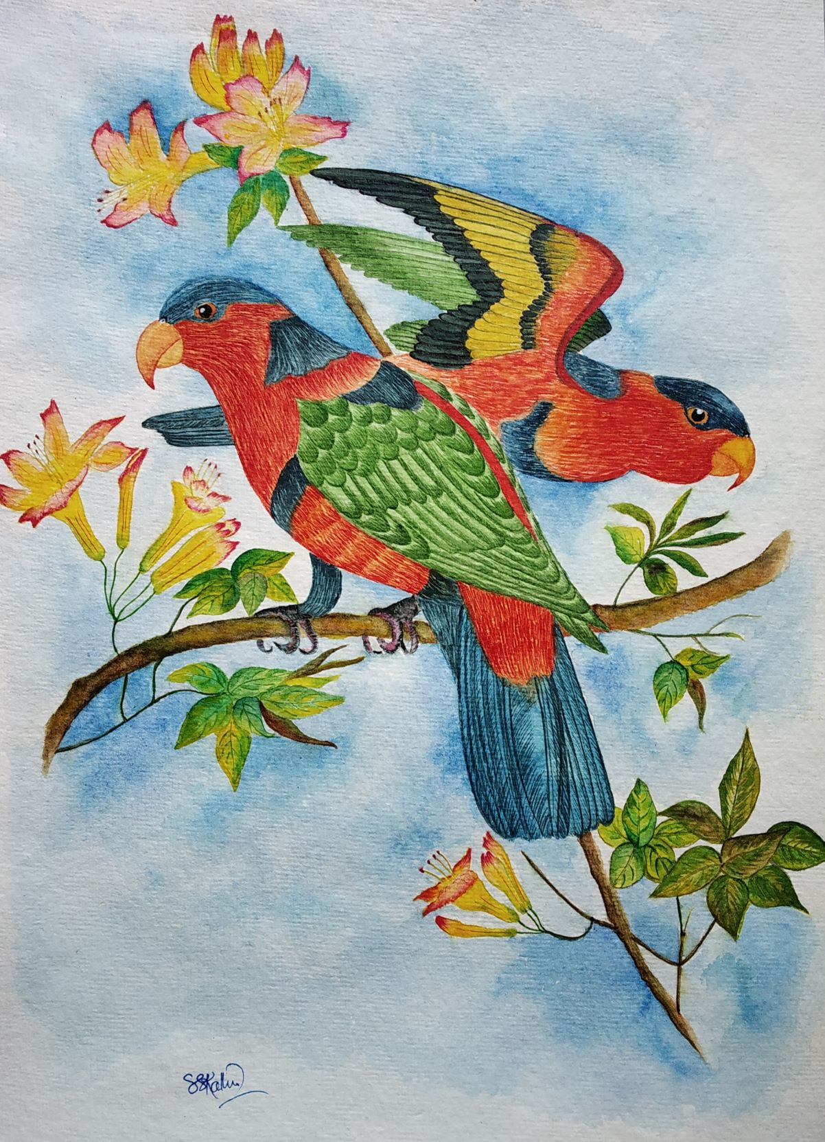 1601477538_intangible-beauty.jpg