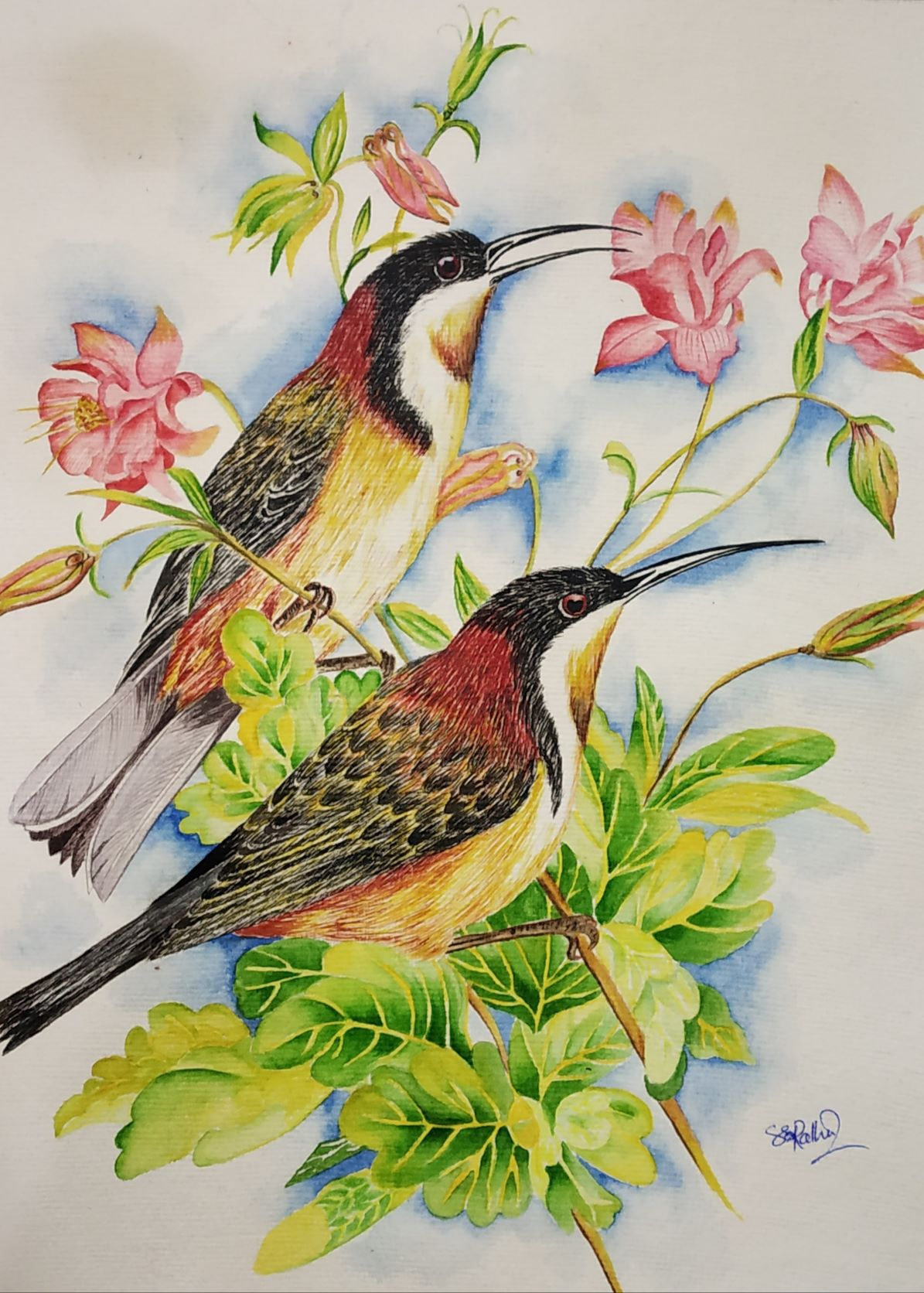 1601482951_love-birds-ii.jpg