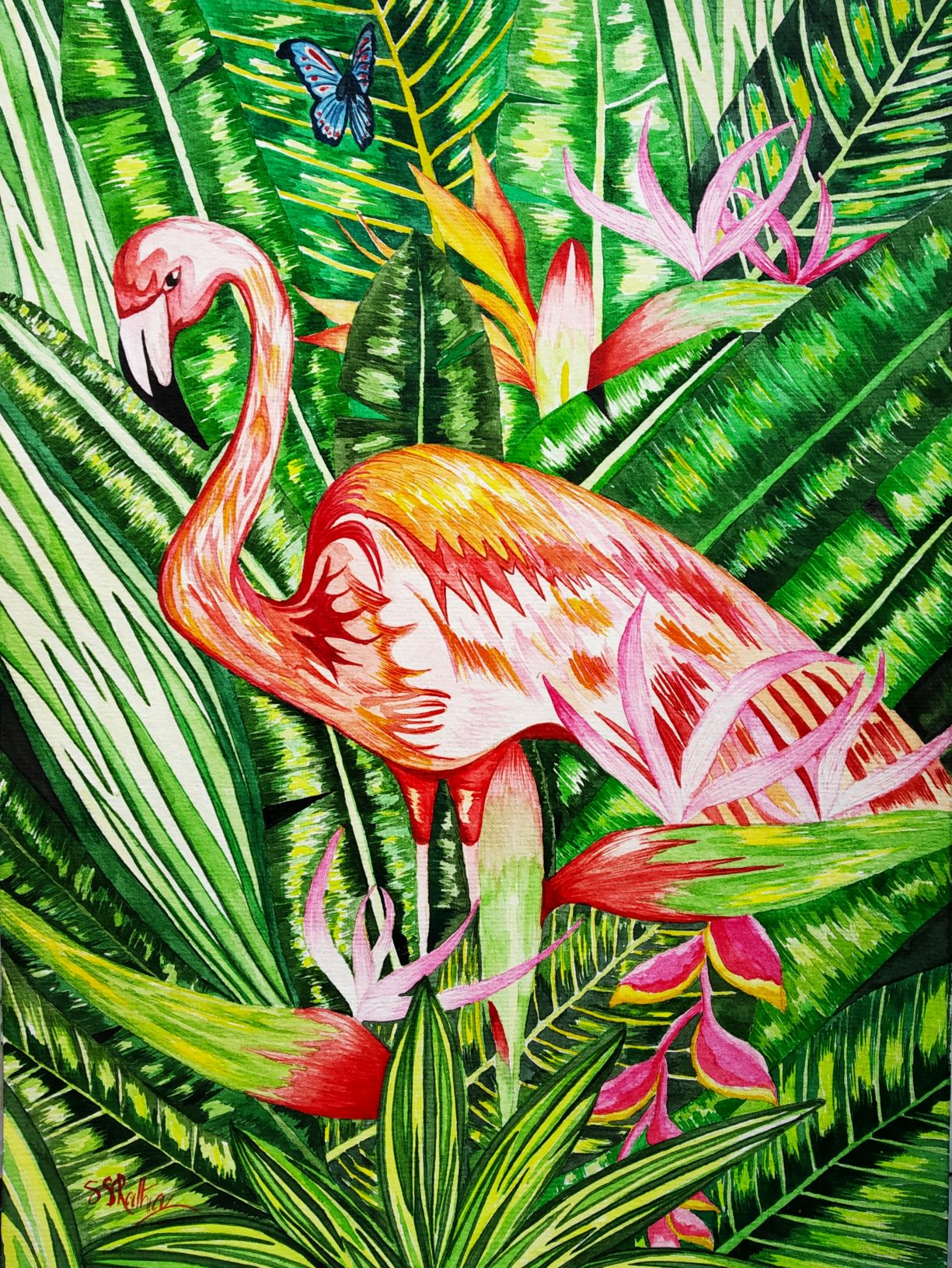 1601484726_rainforest-beauty.jpg