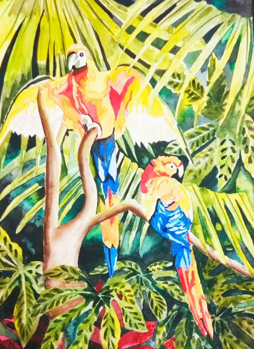 1601487140_water-colour-parrot.jpg